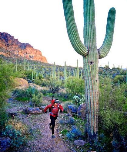 Praising Arizona