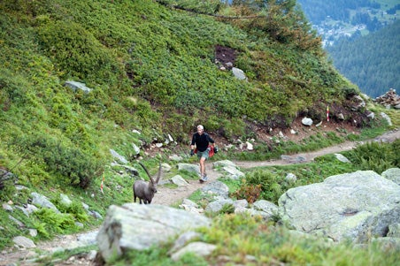 So You Want to be a Trail Runner
