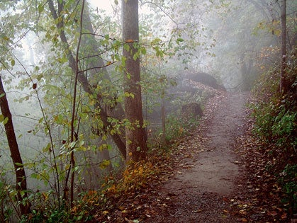 Into The Woods: Henry David Thoreau would have made an excellent trail runner