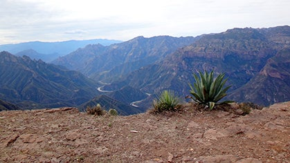 A First Look at Reopened Caballo Blanco Trail