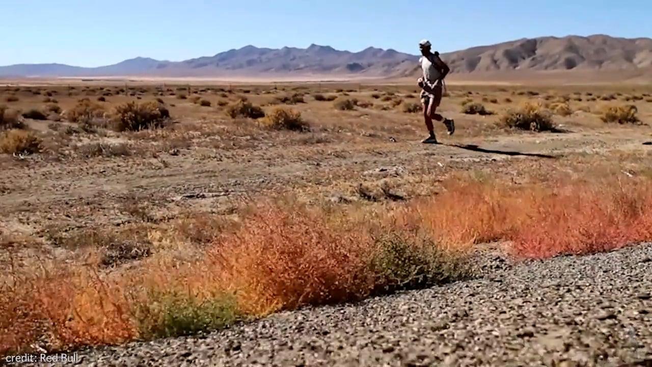 Karl Meltzer, 100-Mile Phenom