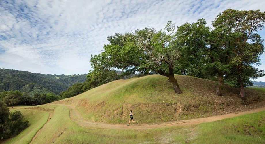 Lake Sonoma 50: What to Watch
