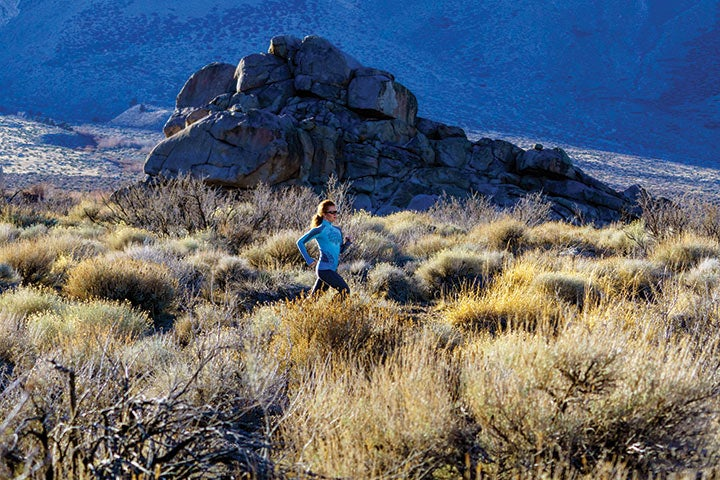 Nestled between the Sierra Nevada on the west and the White Mountains on the east, the Owens Valley offers all the mountain amenities.