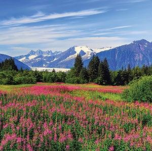 The mountains near Juneau, Alaska