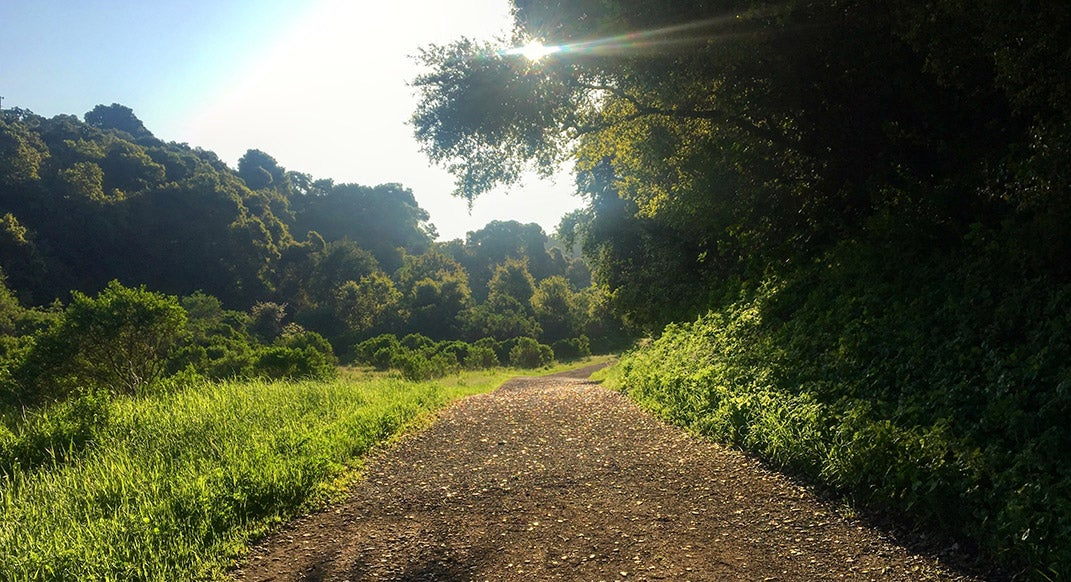 5 Tips for Trail Running with Anxiety and Depression