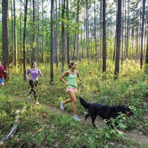 The Urban Trail Runner's Guide